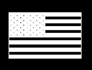 USA flag logo big